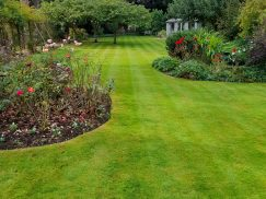 Pro Lawns from Pro-Gardens